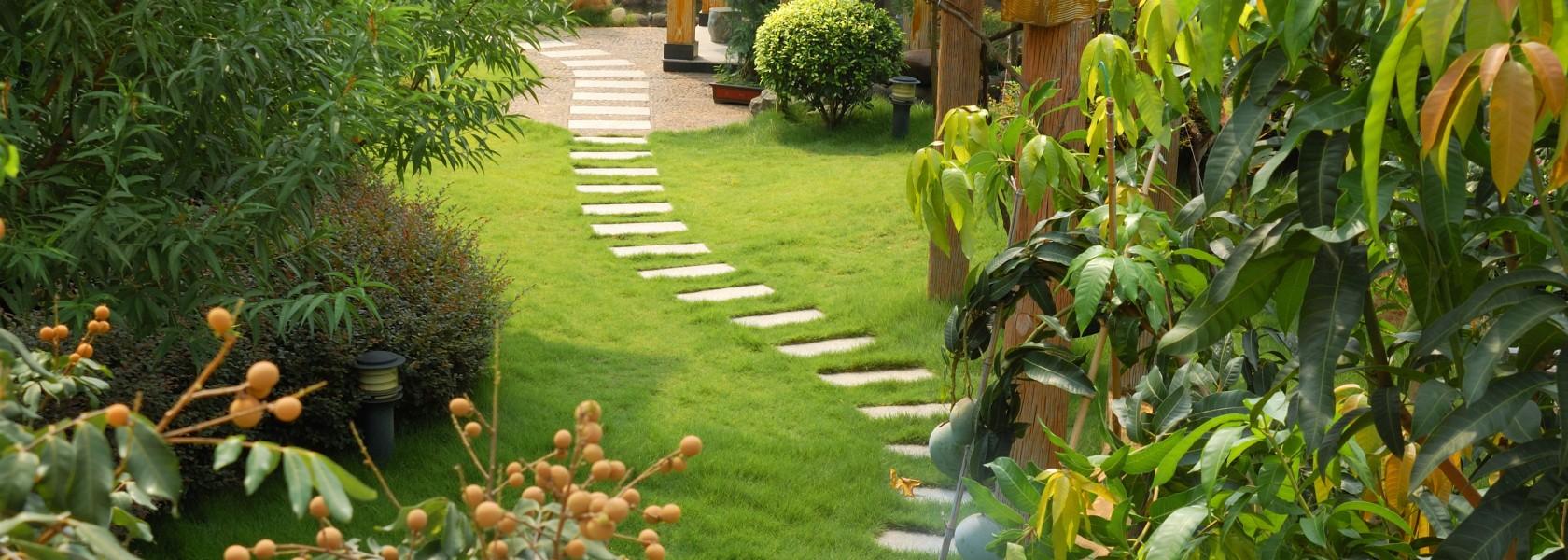 Hoveniersbedrijf van Dam woerden tuin voorbeeld